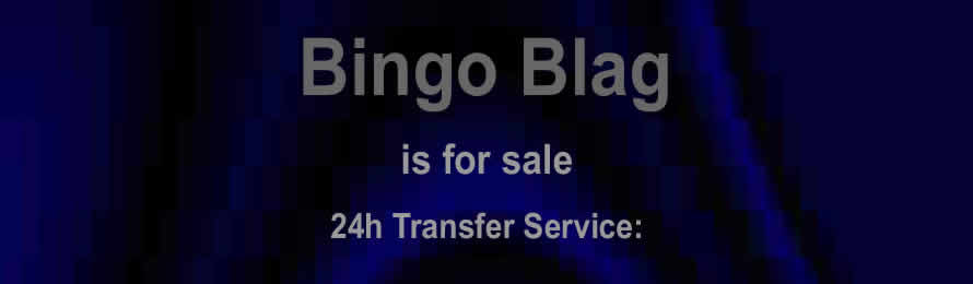 Bingo Blag .com is For Sale  / At Auction via Names Url.com