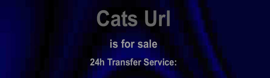 Cat Url.com is for sale. 10% of the sale value will be donated to The Cheetah Conservation Fund, when purchased via ebay.
