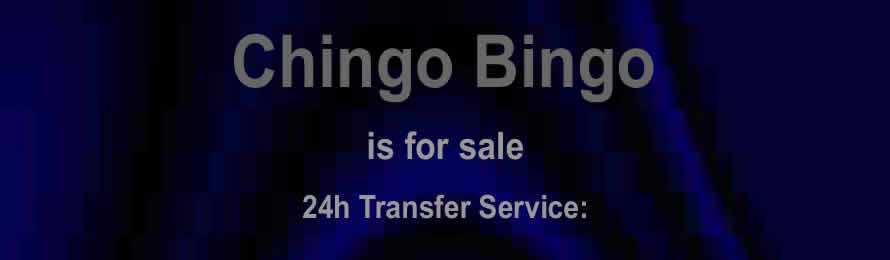 Chingo Bingo .com is For Sale  / At Auction via Names Url.com